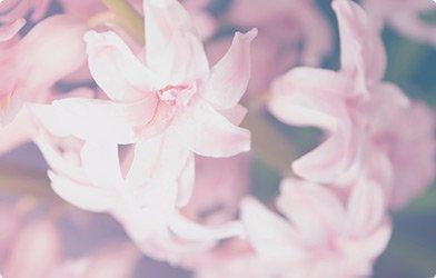 Composition florale pour mariage Mortagne-sur-Sèvre